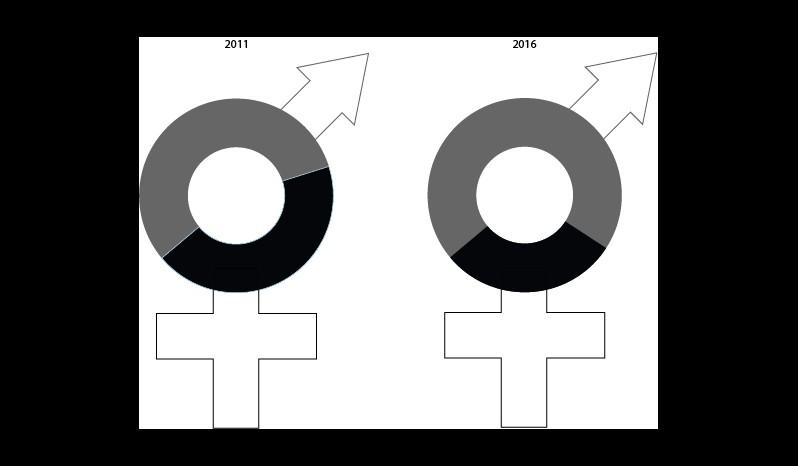 Frauenanteil im Rat 2011 und 2016